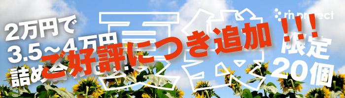 リンプロジェクト 夏袋 夏向けウェア&小物詰め合わせ